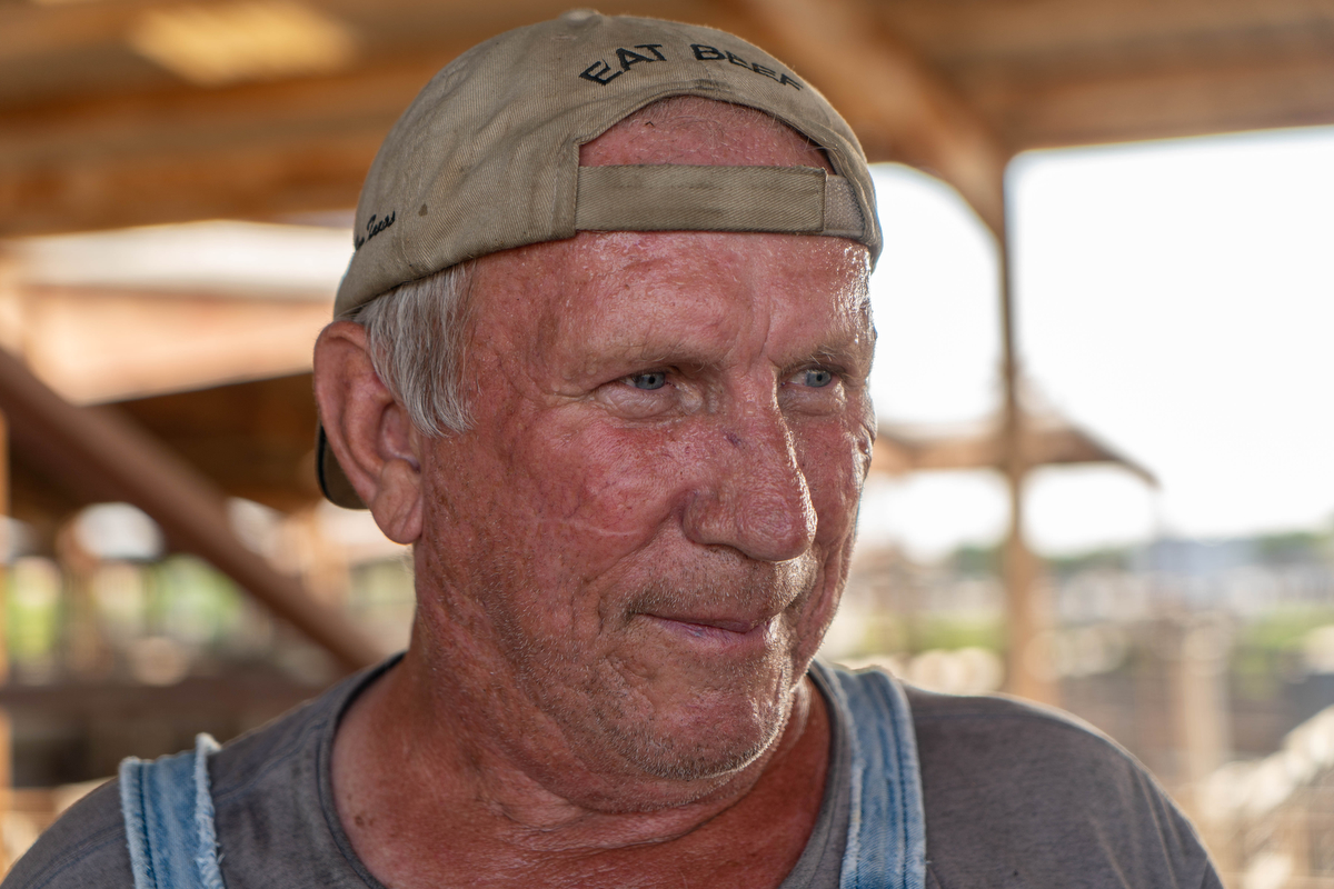 "Larry Brant has been bringing cattle to and from the Oklahoma Stockyards for 45 years. ""It's been good to me,"" he said. Brant acknowledged the divide that exists within the country, but his concerns for the country reside around the agriculture industry. (Tilly Martlatt/News21)"